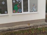 """Акция """"Новогодние окна"""""""