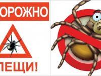 Осторожно, клещи!!!